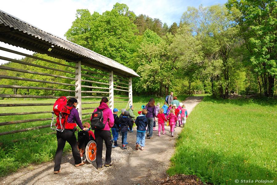 Gozd in podeželje – odprto učno okolje mladih