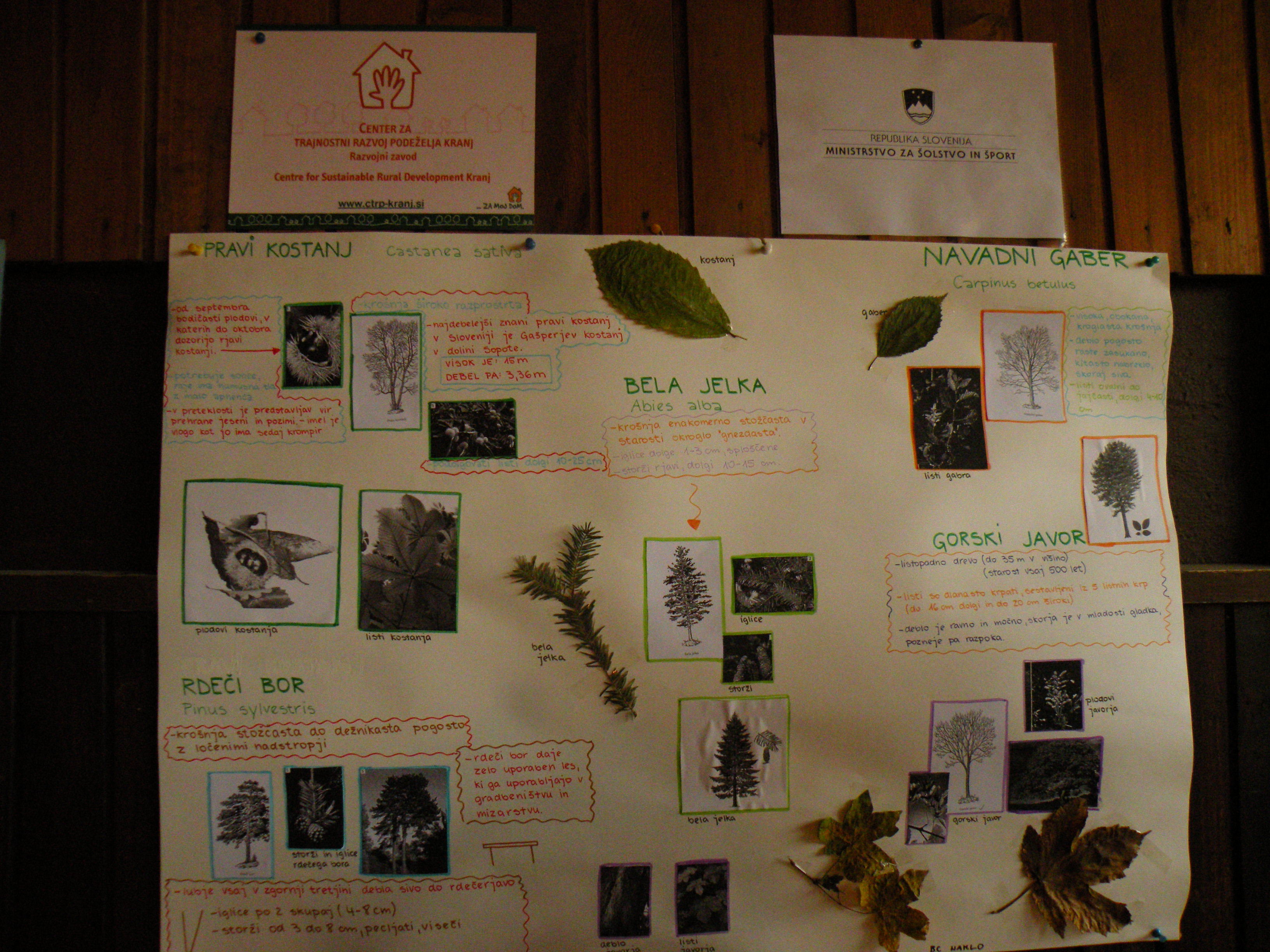 Les in kulturna dediščina – ohranjanje tradicije poslikave lesa – praktična delavnica, Kranj 13. in 14.11.2013