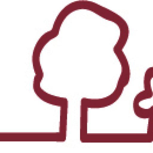 PRAVIČNO-NARAVOSLOVNI DAN NA TRBOJSKEM JEZERU – PRAŠE, 26.10.2013 – BREZPLAČNE AKTIVNOSTI
