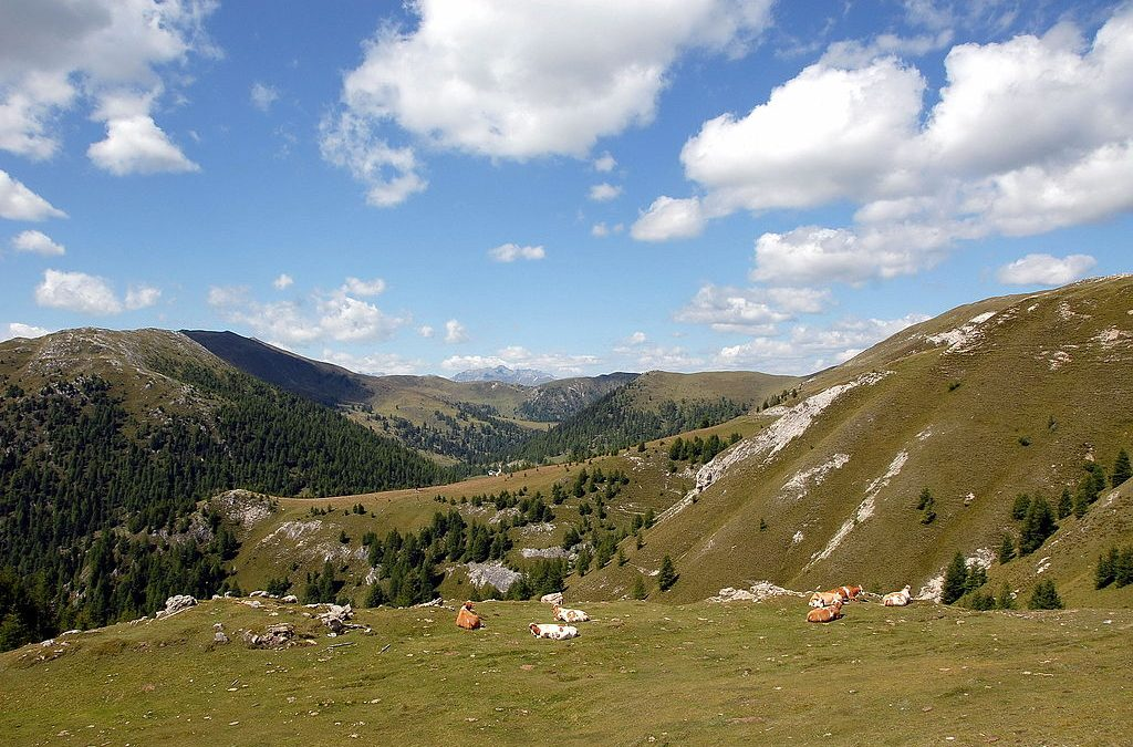 Delovna praksa v zavarovanih območjih Avstrije