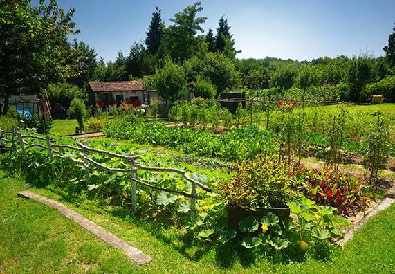 """Natečaj """"Naravi prijazen gorenjski vrt – izbrani vrtovi"""