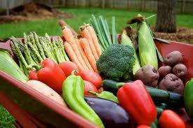 Pomen pestre in zdrave lokalne prehrane za dobro počutje, 15.7.2020, Predoslje