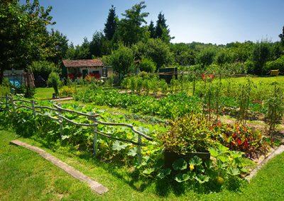 Spoznajmo biodiverziteto v naseljih