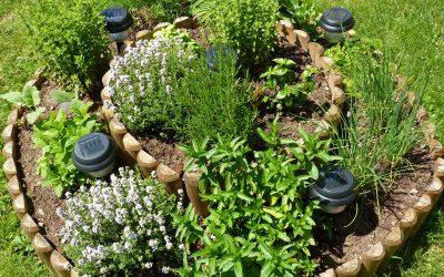 Spiralne gredice na naših vrtovih – praktično, Predoslje,15.7.2020